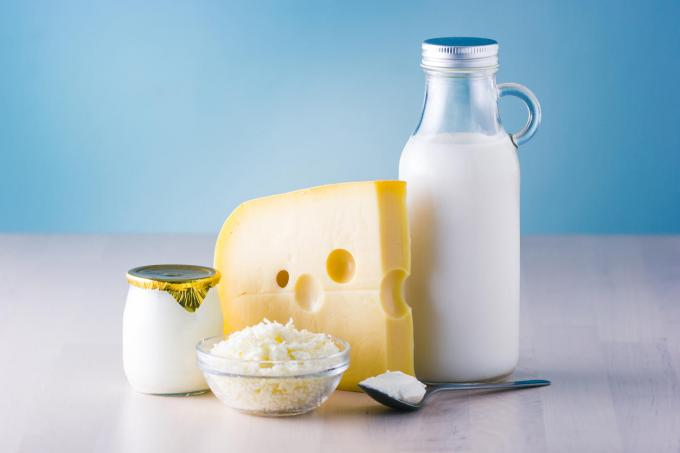 dairy products such as milk, cheese, egg, yogurt and butter