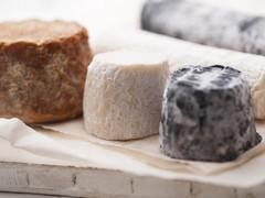 Fromages : les moisissures dangereuses ?