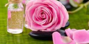 rose, couperose